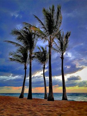 BlueMorningPalms_TROP20.jpg