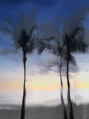 Three Palms Blue _IMP7.JPG