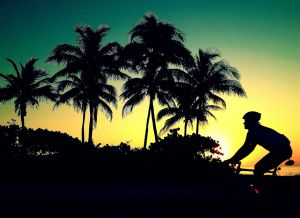 July 1 - Cycle past..jpg