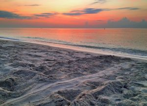 July 1 - Early light and turtle tracks..jpg